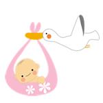 出産・子育て応援事業「ゆりかご・しんじゅく」のご案内